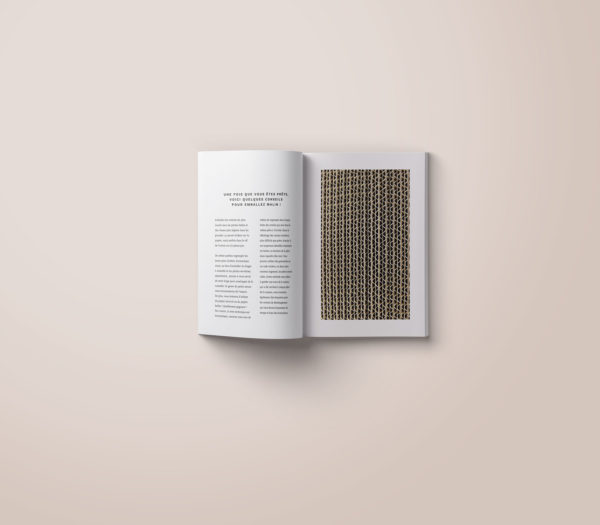 conception-edition-livre-book-guide-du-demenagement-portfolio-marie-chatard-la-pigiste-branding-design-illustration-20