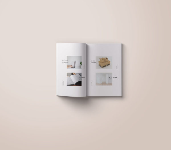 conception-edition-livre-book-guide-du-demenagement-portfolio-marie-chatard-la-pigiste-branding-design-illustration-22