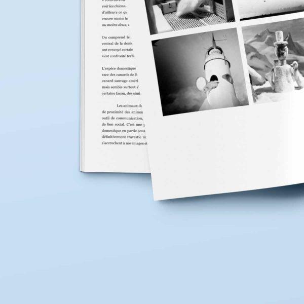 49graphisme-design-editorial-conception-edition-livre-book-memoire-les-aventures-de-saturnin-
