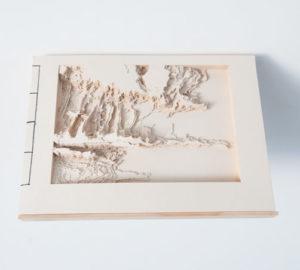 edition-livre-art-decoupe-laser-raconter-une-histoire-sans-mot