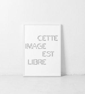 portfolio-marie-chatard-la-pigiste-branding-design-illustration-47