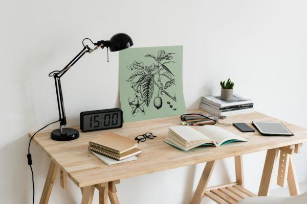 brugmansia-style-botanique-vintage-0