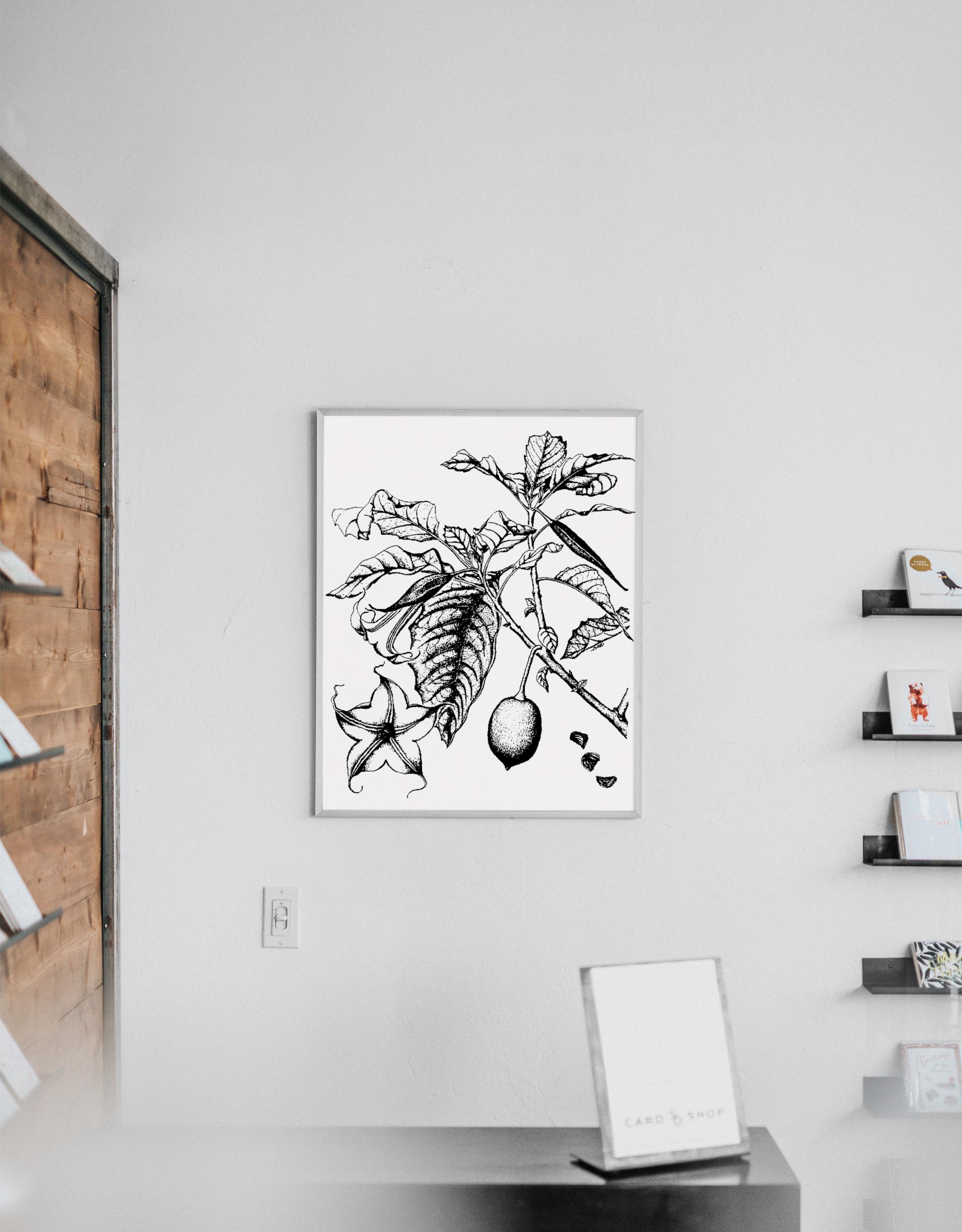 brugmansia-style-botanique-vintage-3