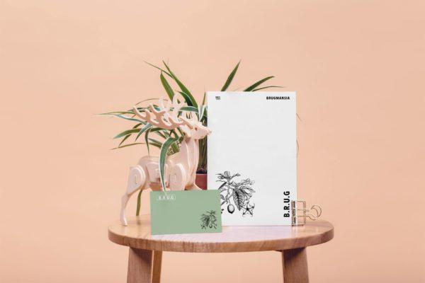 brugmansia-style-botanique-vintage-5