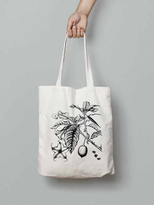 brugmansia-style-botanique-vintage-8